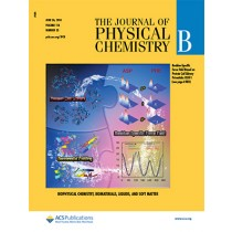 The Journal of Physical Chemistry B: Volume 118, Issue 25