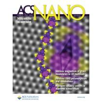 ACS Nano: Volume 7, Issue 12